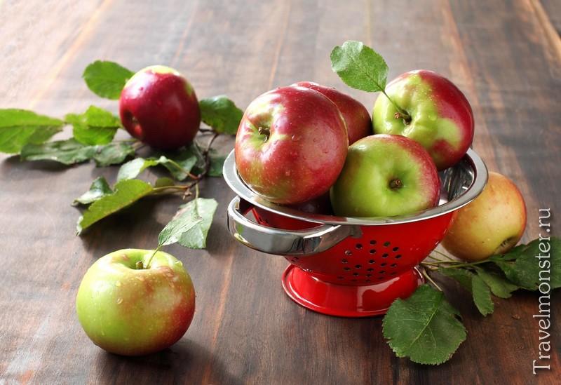 Страна яблок