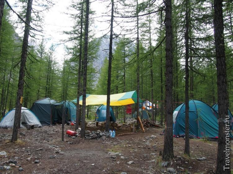 Здесь можно жить нахаляву в палаточном лагере