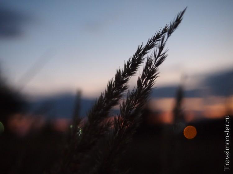 Последний свет заходящего солнце перед наступающей ночью