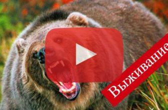 Путешествия по тайге Сибири Видео